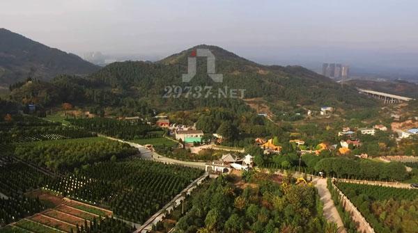《737墓地网》龙泉山洛带同安小学燃灯寺公墓